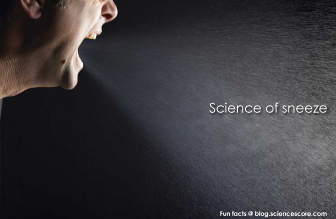 The Science of Sneezes