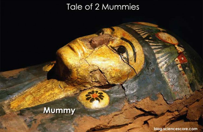 Tale of Two Mummies
