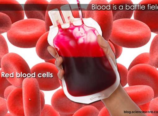 Blood is a Battlefield