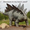 Dinosaurs in My Backyard