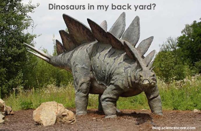 Dinosaurs in My Backyard
