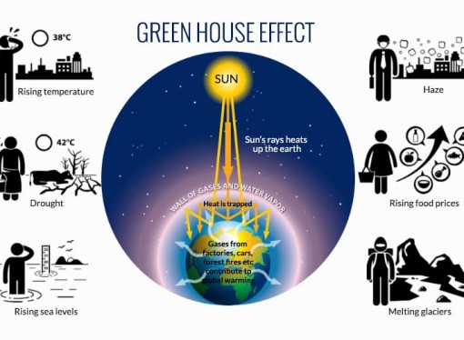 What is the green house effect?
