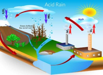 What causes acid rain?