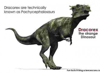Which dinosaur is named after Harry Potter's school?
