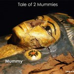 A Tale of Two Mummies