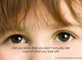 Did you know that you don't  actually see most of what you look at?