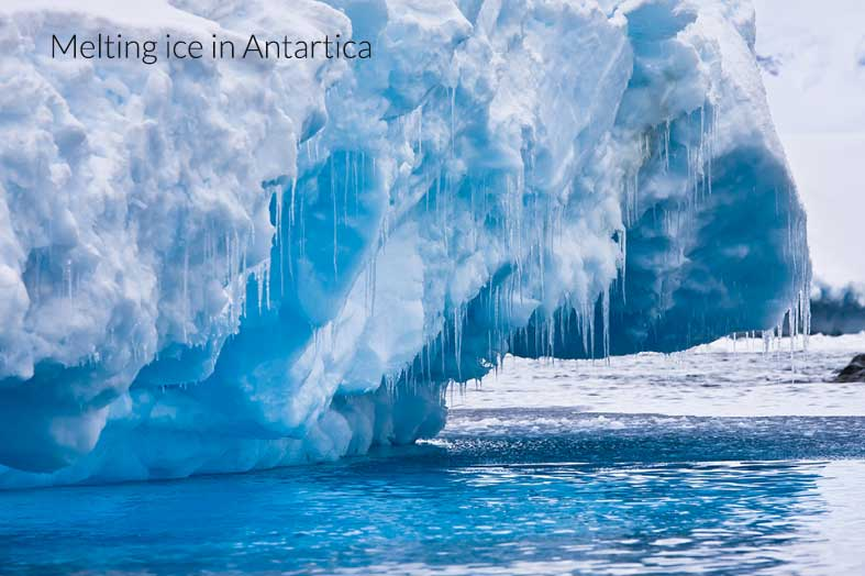 polar ice caps