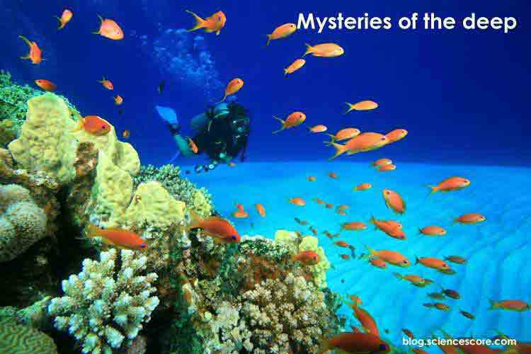 mysteries-of-the-deep-1