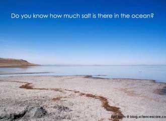 ocean-salt