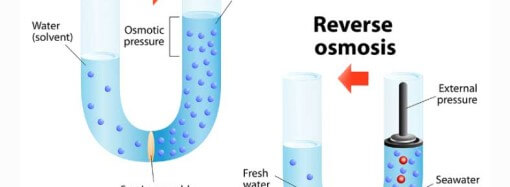 What is osmosis?