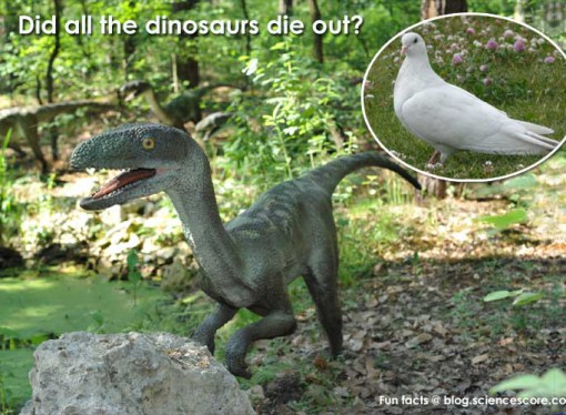 Did all the dinosaurs die out?