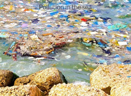 Plastics are dumped in ocean. what damage is it causing?