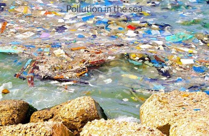 Plastics are dumped in ocean. what damage is it causing?